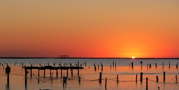 Viaje para grupos a aventura en delta del ebro